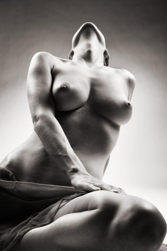 donna corpo