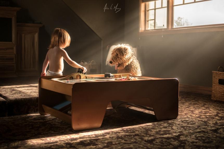 bambina e cane 500 px