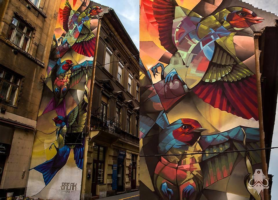birds street art