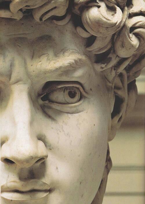 volto di David  di Michelangelo